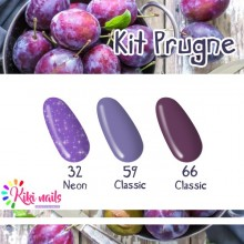 Kit Prugne: gel color N32, B66,CL 59 Silcare