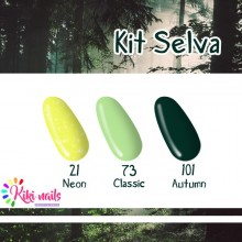 Kit Selva: gel color Silcare N21, CL73, A101