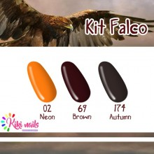 Kit falco: gel color Silcare N02, B69, A104