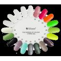 Smalto semipermanente Hybrid Gel The Garden of Colour Silcare 9 gr